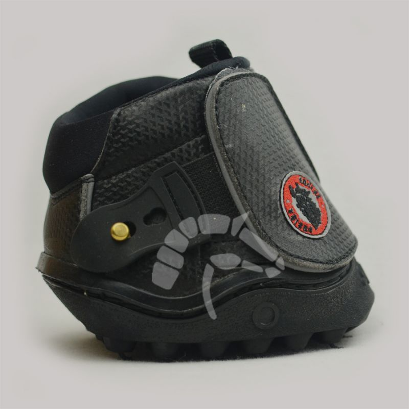 Equine Fusion Shoe Active Runde Form
